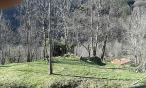 Ruïnes de can Peirer a Leca